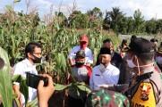 Melihat Aktifitas Kampung Tangguh Tangkal Covid-19 di Muba