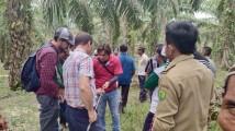 Mendis Jaya Hadirkan Profesor Dari Negeri Paman Sam, Tingkatkan Pengetahuan Petani Dalam Manajemen Sawit
