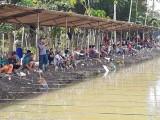 Selain menjadi hiburan bagi masyarakat juga akan mengangkat wisata desa menuju kemandirian desa