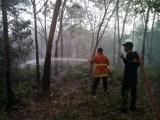 Meski Sudah Di Sosialisasikan  Larangan Membakar Hutan dan Lahan, Kebakaranpun Tetap Terjadi