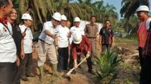 Launching Pembangunan Sawit Rakyat (PSR) Tahap II di Desa Sumber Rejeki Kecamatan Sungai Lilin, Senin (6/8/2018)