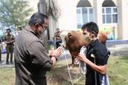 Pemkab Muba Kurban 30 Ekor Sapi, Bupati Dodi Serahkan Langsung ke Warga