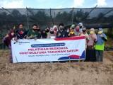 PT PDC Gelar Pelatihan Budidaya Hortikultura Tanaman Sayur.