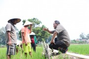 Tahun 2021 Dodi Reza Bangun Taman Rekreasi Sawah