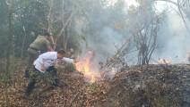 Terjadi Kebakaran Camat Sekayu Turun Langsung